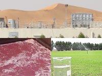 Traitement industriel des eaux usées pour la ferme de volaille